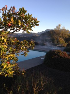The hot spring and my view of the mountains in Calistoga, California